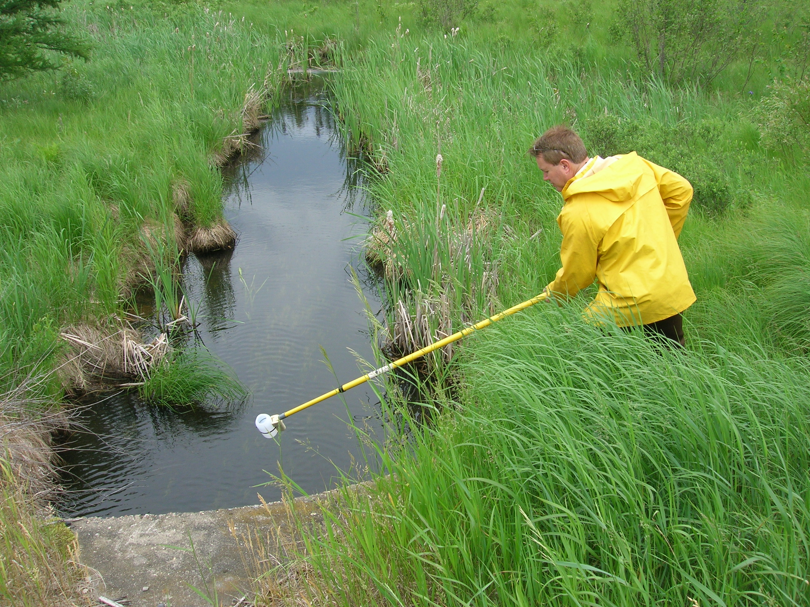 Worker sampling pond water