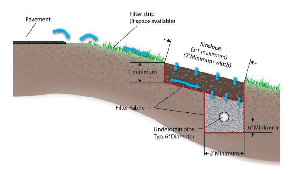 This cross section of a common engineered bioslope shows the position of a vegetation filter strip, a section of biofiltration material and an underdrain pipe beneath it. The blue arrows indicate the flow of water.