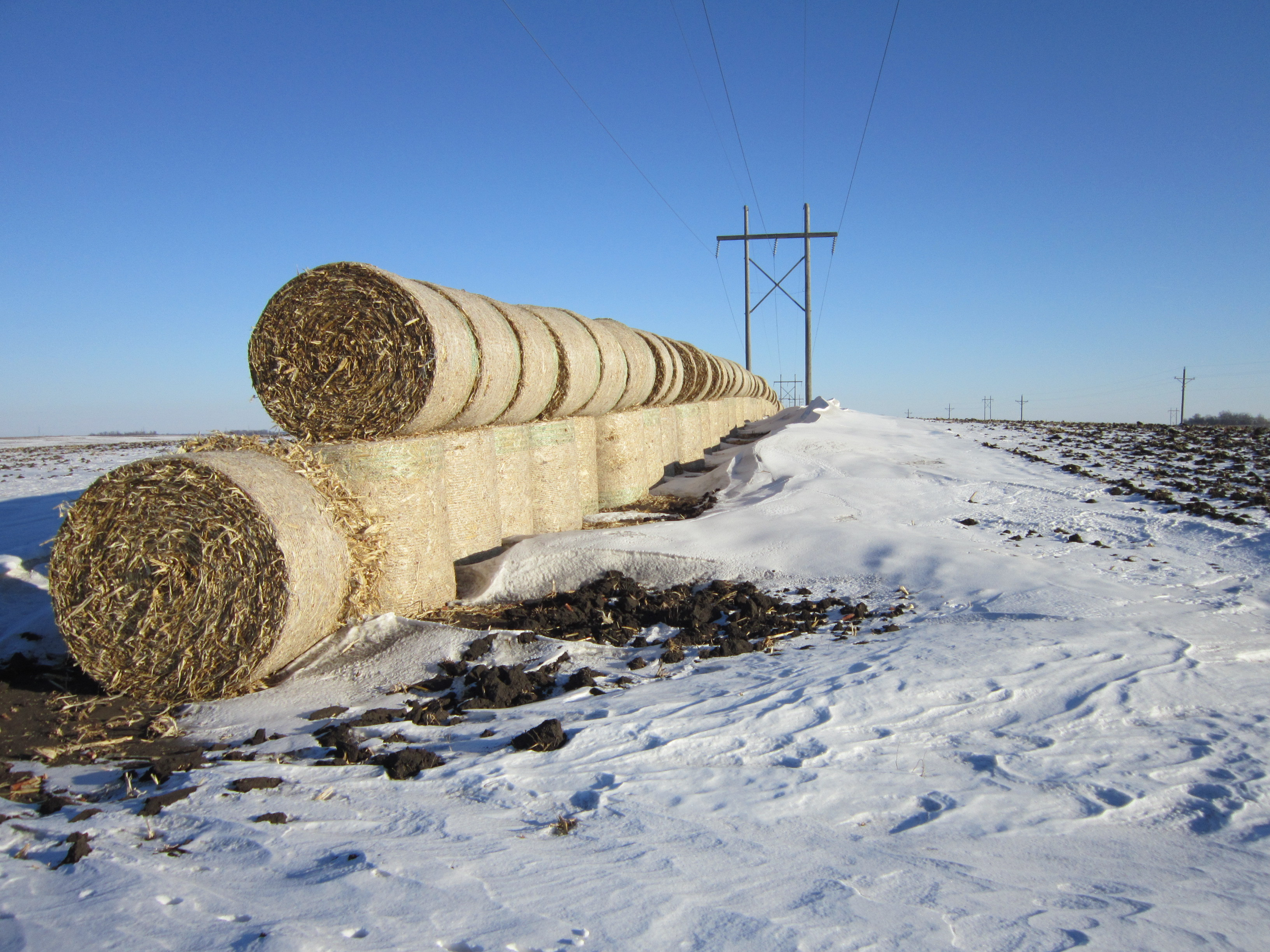 Stacked hay bales make effective snow fences for trapping blowing and drifting snow before it reaches a roadway corridor. The bales can be used for agricultural purposes once winter has passed.